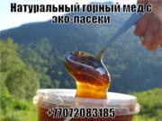 Мед натуральный горный с эко-пасеки